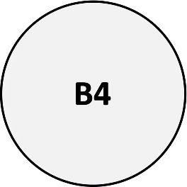 B04 - Pin