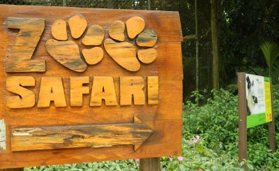 Passeio ao Zoo Safari