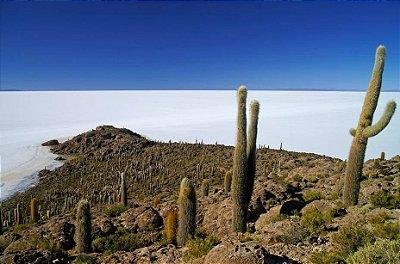 Excursão Bolívia e Chile: Salar de Uyuni e Deserto do Atacama. 9 dias. MAIO e SETEMBRO 2019