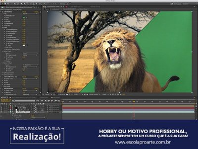 AFTER EFFECTS - Curso Individual - 20 horas