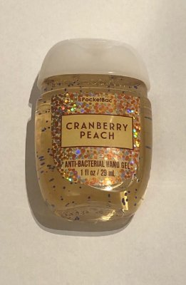 Cranberry Peach Pocketback Anti-Bacterial Hand Gel