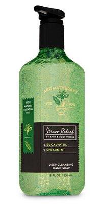 Aromatherapy Eucalyptus Spearmint Deep Cleansing Hand Soap
