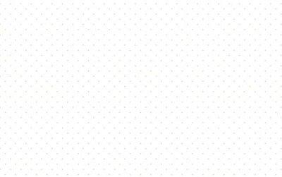 Tecido Tricoline  Estampa Micro Poá  Branco com Fundo Branco - 50 cm X 150 cm