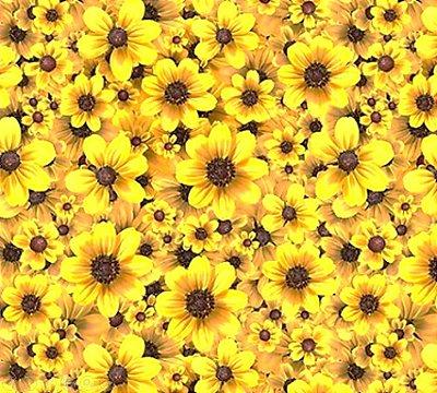 Tecido Estampa Digital de Flor de Girassol - Preço de 50 cm x 150 cm