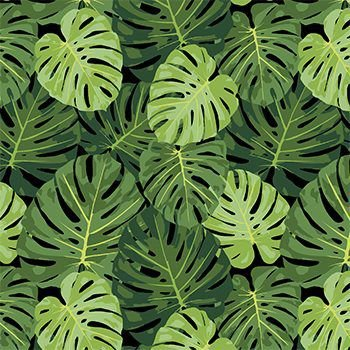 Tecido Tricoline Folhagens - Fundo Preto - Coleção Paraíso Tropical - Preço de 50 cm x 150 cm