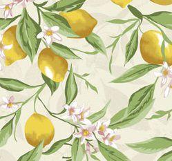 Tecido Tricoline Limão Siciliano -Fundo Bege - Coleção Fruits - Preço de 50 cm x 150 cm