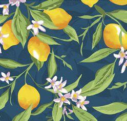Tecido Tricoline Limão Siciliano - Fundo Azul - Coleção Fruits - Preço de 50 cm x 150 cm