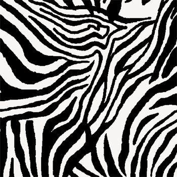 Tecido Tricoline Estampa Zebra - Coleção Solte Suas Feras - Preço de 50 cm X 150 cm