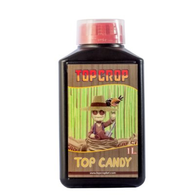 TOP CROP - Top Candy