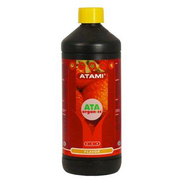 Flavor 100ml - FRACIONADO