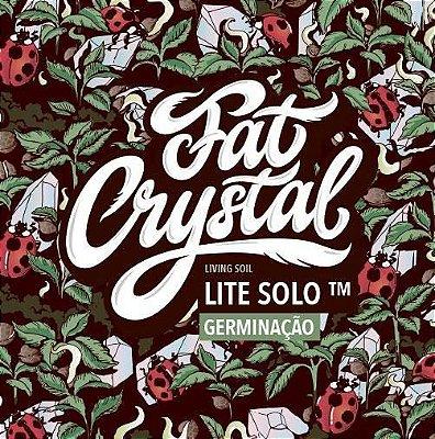 Fat Crystal Solo Vivo - GERMINAÇÃO 20 Litros