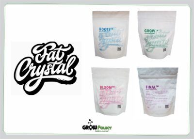 Fat Crystal - PACK START