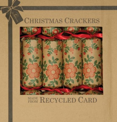 ECO CRACKERS - EDEN