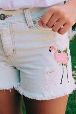 BLACK FRIDAY | Shorts Jeans Flamingo