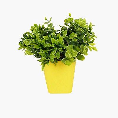 Vaso de Plantas Parede Amarelo