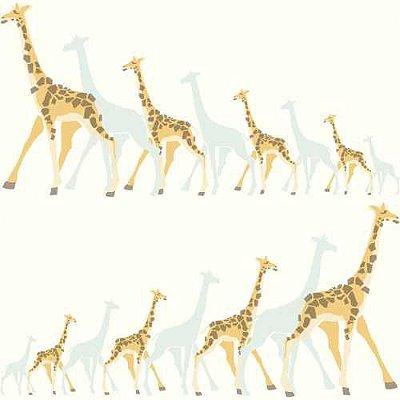 Papel de Parede Dwell Studio Baby Kids DW2360 Girafas