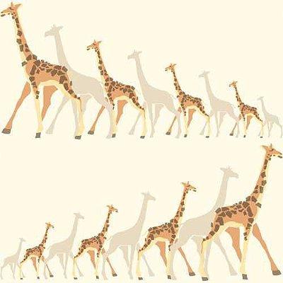 Papel de Parede Dwell Studio Baby Kids DW2361 Girafas