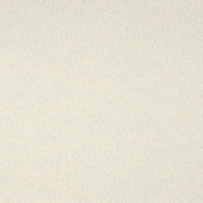 Papel De Parede Vinilico Colours WW0105-01
