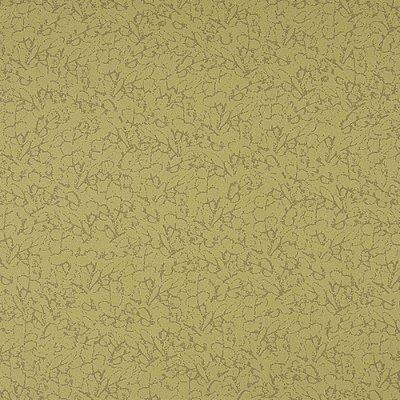 Papel De Parede Vinilico Colours WW0105-09