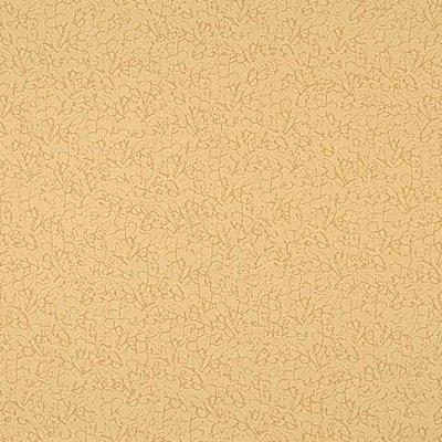 Papel De Parede Vinilico Colours WW0105-08