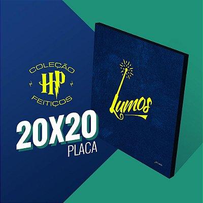 Harry Potter - Lumos 20x20