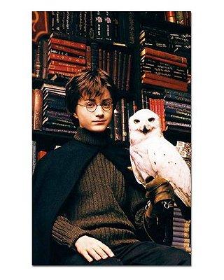 Ímã Decorativo Harry e Hedwig - Harry Potter - IHP02