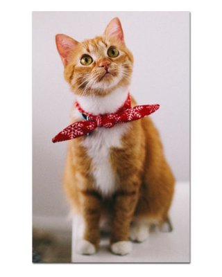 Ímã Decorativo Gato Abissínio - Pet Cat - IGAT19