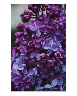 Ímã Decorativo Flor de Lilás - Garden - IFL07