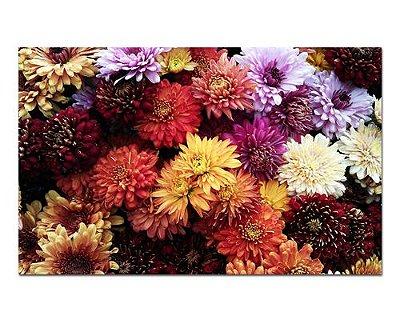 Ímã Decorativo Crisântemo - Garden - IFL13