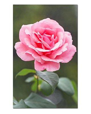 Ímã Decorativo Rosas - Garden - IFL15