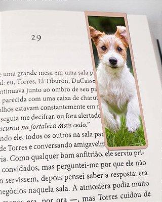 Marcador De Página Magnético Jack Russell Terrier - Pet Dog - MDOG03