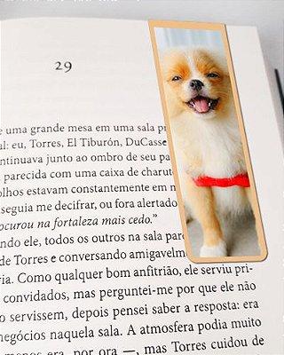 Marcador De Página Magnético Lulu da Pomerânia - Pet Dog - MDOG11