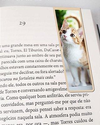 Marcador De Página Magnético Gato Ragamuffin - Pet Cat - MCAT09