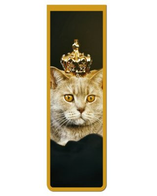 Marcador De Página Magnético Gato Inglês - Pet Cat - MCAT12