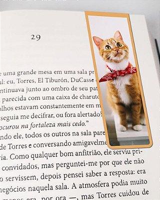 Marcador De Página Magnético Gato Abissínio - Pet Cat - MCAT13