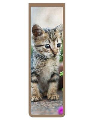 Marcador De Página Magnético Gato Manês - Pet Cat - MCAT15
