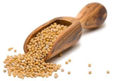 Mostarda em grãos - 50g
