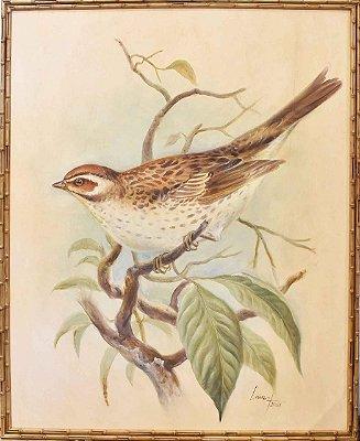 Quadro lona pintada a óleo pássaro 2
