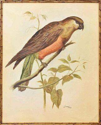 Quadro lona pintada a óleo pássaro 4