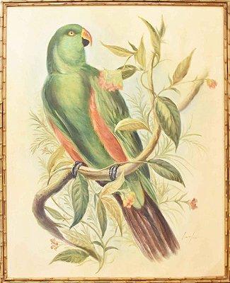 Quadro lona pintada a óleo pássaro 5