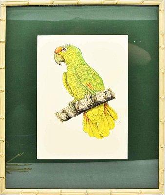 Quadro de Pássaro 1 com Passpatour verde e faux bamboo