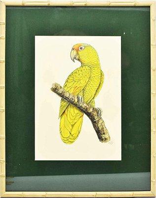 Quadro de Pássaro 3 com Passpatour verde e faux bamboo