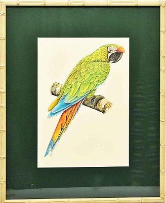 Quadro de Pássaro 5 com Passpatour verde e faux bamboo