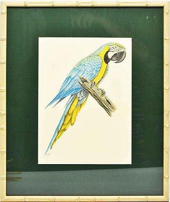 Quadro de Pássaro 6 com Passpatour verde e faux bamboo