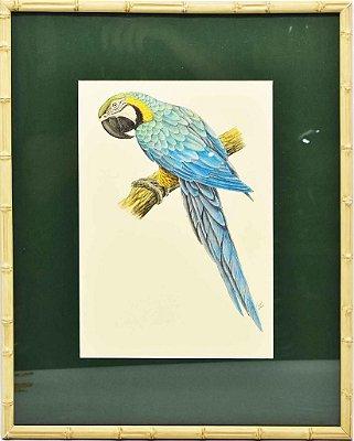 Quadro de Pássaro 8 com Passpatour verde e faux bamboo