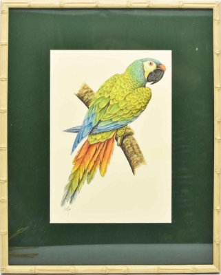 Quadro de Pássaro 11 com Passpatour verde e faux bamboo