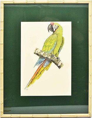 Quadro de Pássaro 14 com Passpatour verde e faux bamboo