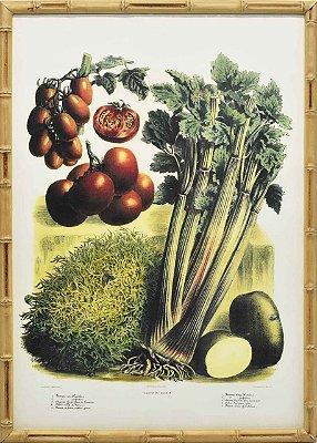 Quadro veggies 2