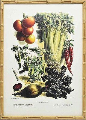 Quadro veggies 3