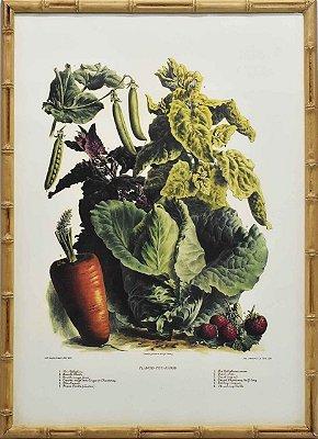 Quadro de veggies 4